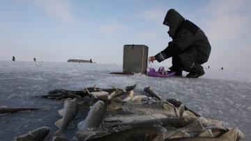 Автор Тема Правила любительской ловли в Эстонии