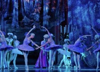 Сцена из балета Спящая красавица, Театр балета классической хореографии