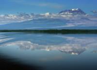 Вид на вулкан Шивелуч. Архив