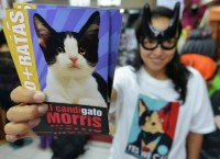 Избирательная кампания кота Морриса