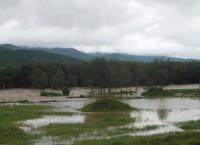 Наводнение в Тернейском районе в Приморье