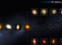 """Снимки древних галактик, полученные Хабблом, и их положение на """"древе"""" эволюции"""
