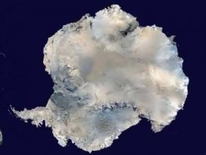 антаркт