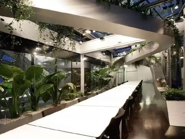Тропическая теплица - вариант тотального озеленения офисного пространства от дизайнеров из Sadar+Vuga