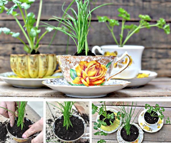 цветочный горшок из чашки