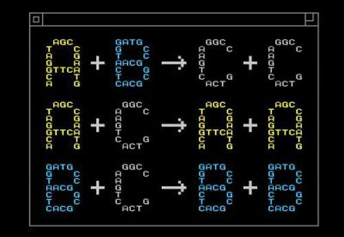 Элементы химической программы